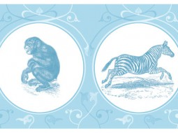 Animal wallpaper border: African Wildlife in blue